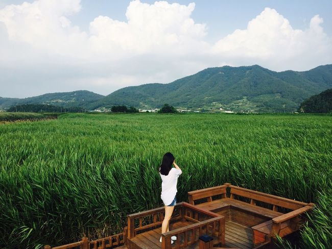 Sky Growth Nature Rear View Mountain One Person Day Beauty In Nature Travel Suncheon Suncheon Bay