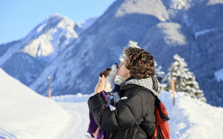 Rear view of people on snow covered mountains