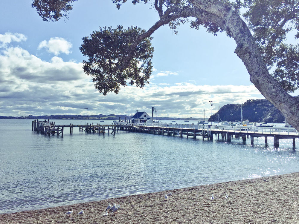 Architecture Beach Bridge Bridge - Man Made Structure Built Structure Cloud - Sky Connection Day Distant Mountain Range New Zealand No People Outdoors Pier Russell Scenics Sea Shore Sky Tourism Tranquil Scene Tranquility Travel Destinations Tree Water