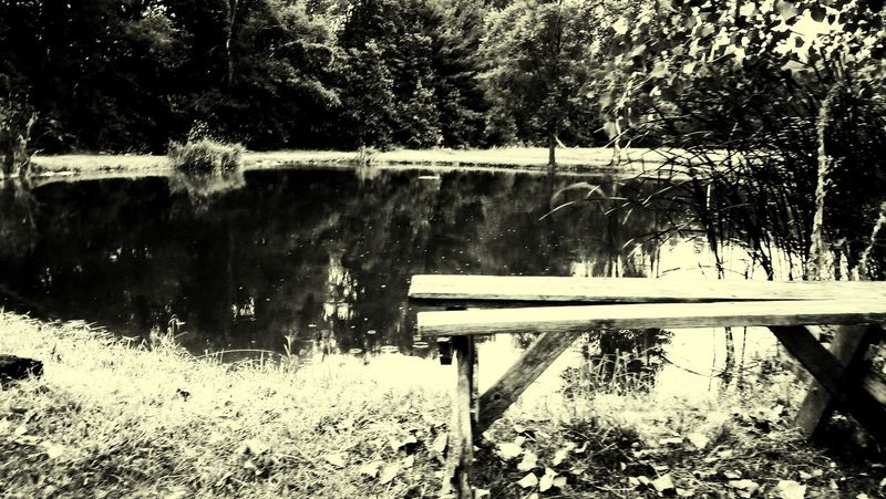 EyeEmNewHere Perspectives On Nature Be. Ready. Landscapephotography Outdoors Trees And Nature Fishing Spot Pond Life Pondography Pond View Pond Water Pond Collection Pond Side Monochrome _ Collection Serene Outdoors Serene, Tranquil, Relaxed, Unruffled, Unperturbed, Unflustered, Untroubled My Old Wooden Bench Black And White Friday