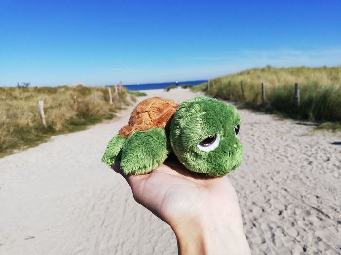 Cropped hand holding turtle toy at beach against blue sky