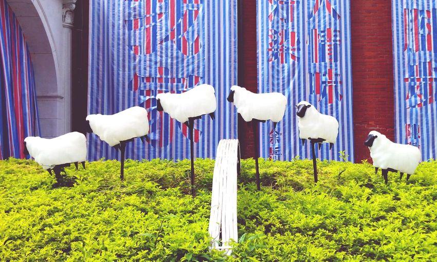 Urban Lifestyle Mocataipei Counting Sheep Art Museum Of Contemporary Art Taipei