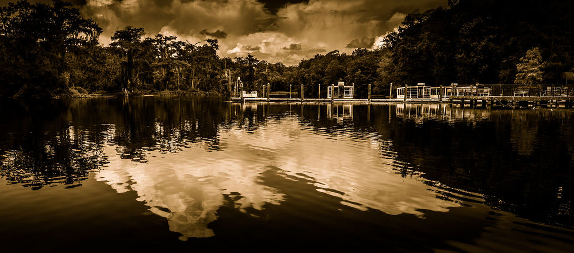 The Black Lagoon Beauty In Nature Black & White Black And White Blackandwhite Florida Lake Nature No People Non-urban Scene Outdoors Reflection Reflection Lake Remote River Scenics Standing Water Swamp Tranquility Wakulla River Wakulla State Park Water Water Surface Waterfront Wetlands