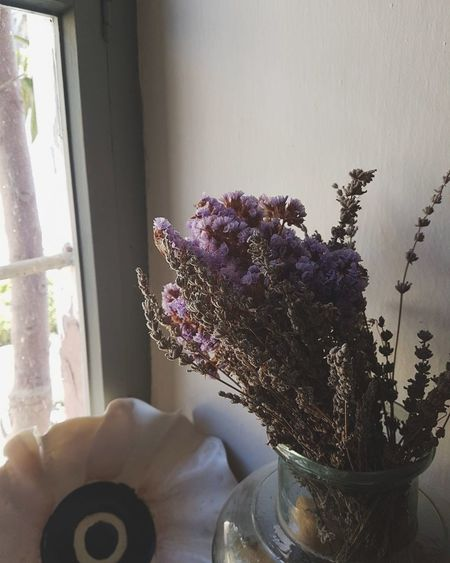 Lavender looks fine even when its dead.