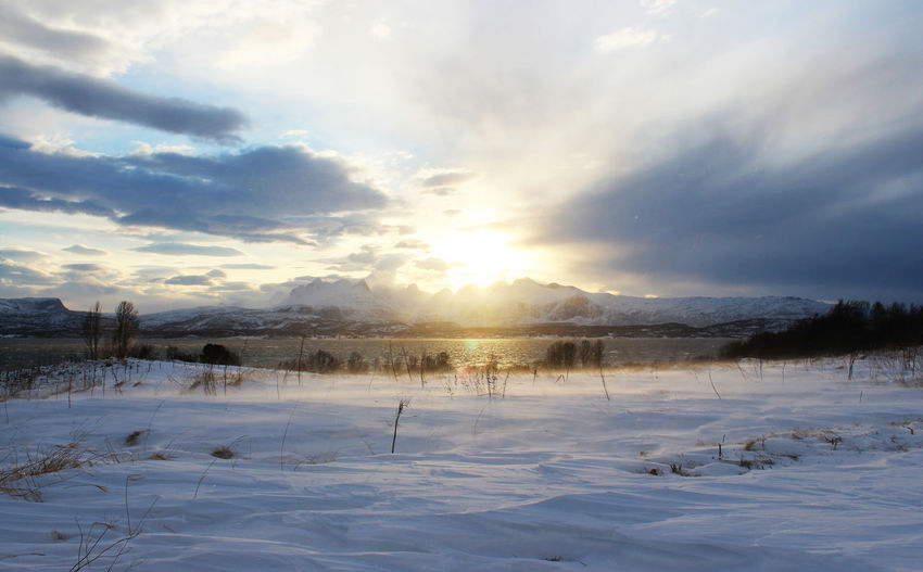 Sun and mountains in Bodø Scenics - Nature Bodø Norway🇳🇴 Norway Nature Moutains Winter Snow Sea Sun