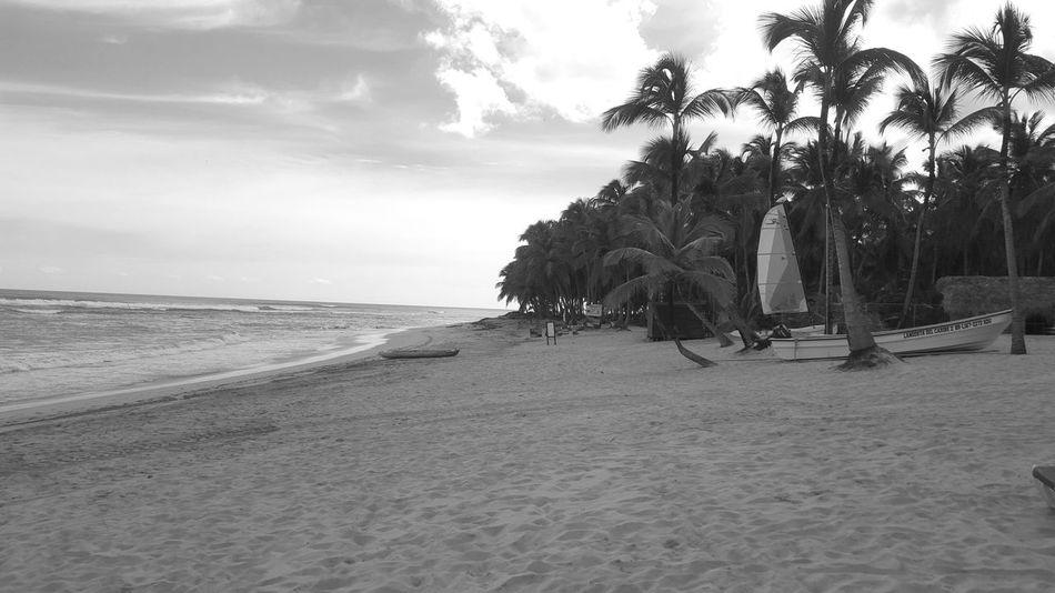 99 problems but a beach ain't one. Sea Beach Sand Water Shore Coastline