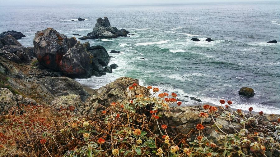 Autumn colors on headland cliffs. gorgeous ocean sitting and contemplating overlook.