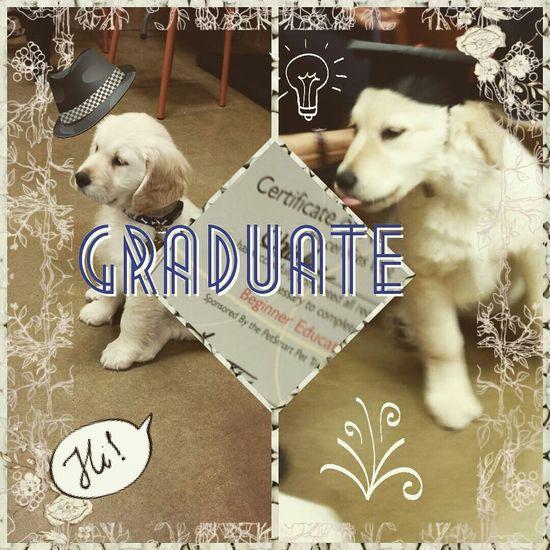 I woof u but congrats ?? Ilovemydog Cute Pets Cuddlebuddy Puppy Love