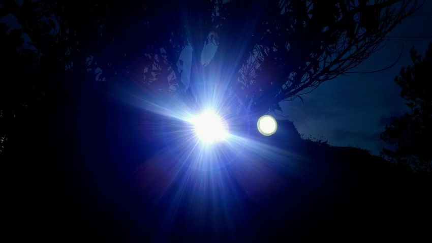 Getting Inspired Light And Shadow EyeEm Gallery Light In The Darkness Lightreflection Hello World Hagging A Tree Nature