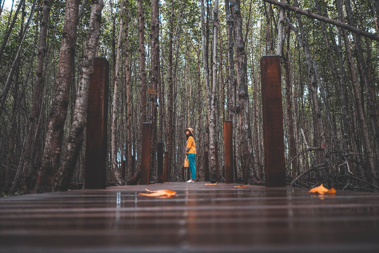 Surface level shot of woman standing on boardwalk in forest