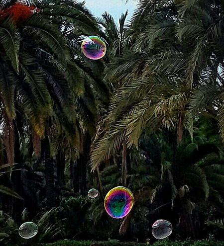 Pumps Pumps ♥ Soap Bubbles Colors Green