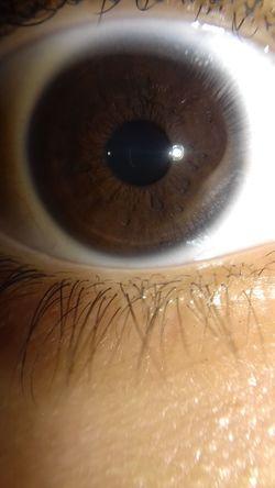 The Great Outdoors - 2017 EyeEm Awards Eye Brown Eye Natural Eye Olhos Castanhos ESCURO Lente De Celular