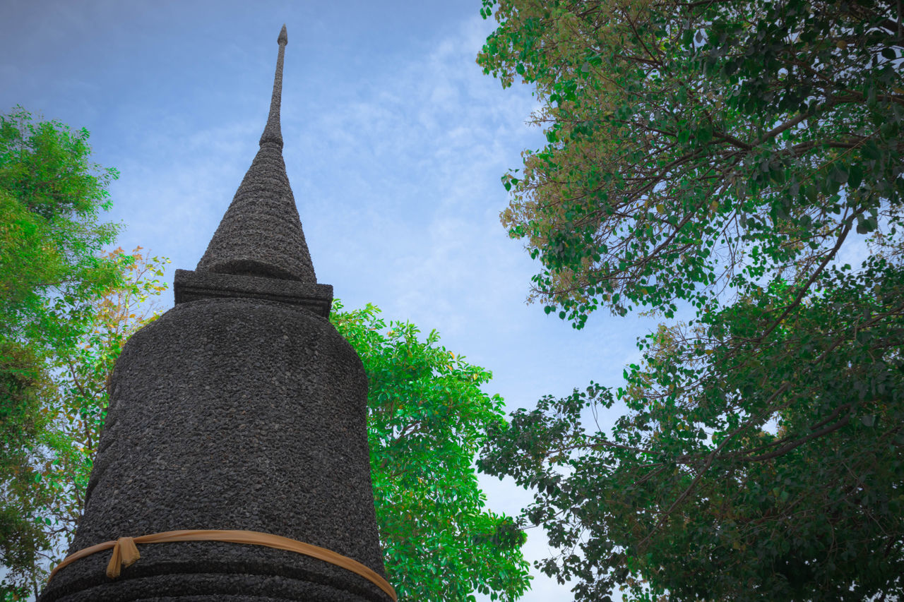 plant, tree, architecture, low angle view, built structure, sky, no people, building, building exterior, religion, day, nature, place of worship, spirituality, belief, spire, growth, outdoors, tower