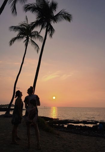 Sunset Palm Tree Beach Sea Two People Togetherness Silhouette Sky Leisure Activity Real People Full Length Water Big Island Hawaii Connected By Travel Hawaii Life Beauty In Nature
