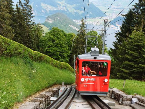 Mountain Transportation Tree Landscape Overhead Cable Car Nature Outdoors Sky Public Transportation Day No People