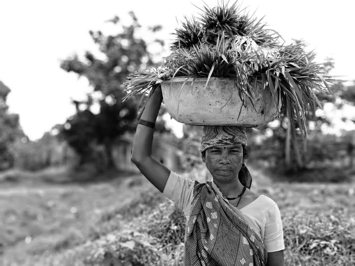 Tree Men Portrait Headshot Arts Culture And Entertainment Sky Grass Close-up Carrying On Head Farmland Agricultural Field Cultivated Land Farm Rice Paddy Plantation International Women's Day 2019