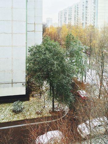 Москва, осень очень, снег