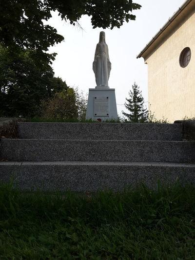 Madonna Virgin