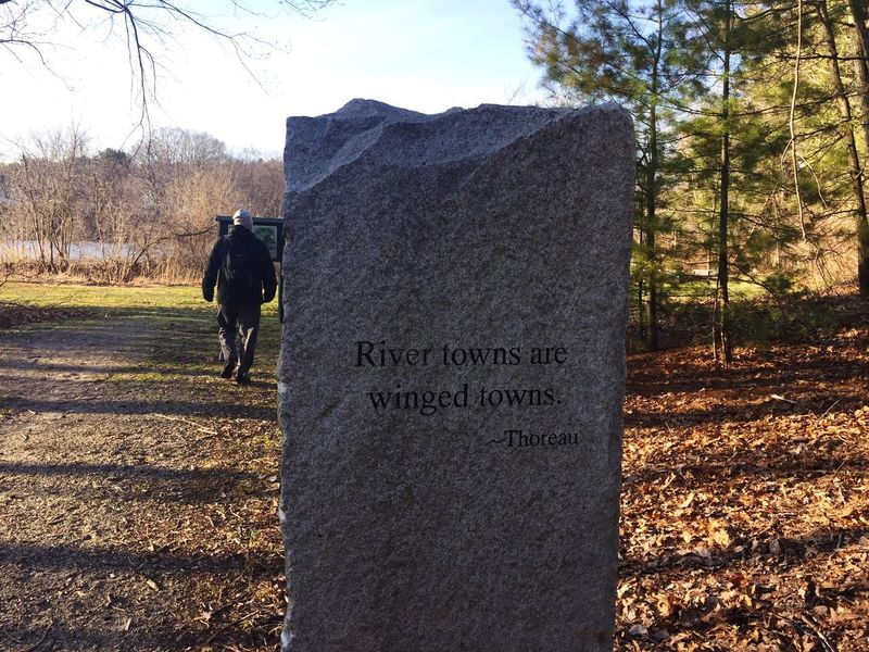 Wisdom Engraving Quote Thoreau Nature Outdoors Outside Monument Words Stone Rock Texture Showcase April