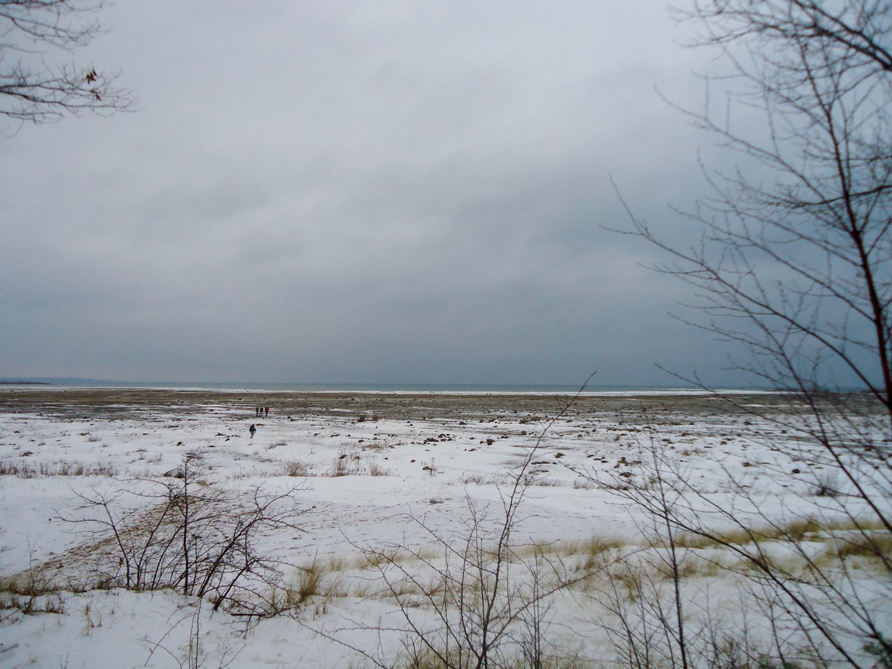Scenic View Of Snow Covered Shore Against Sky