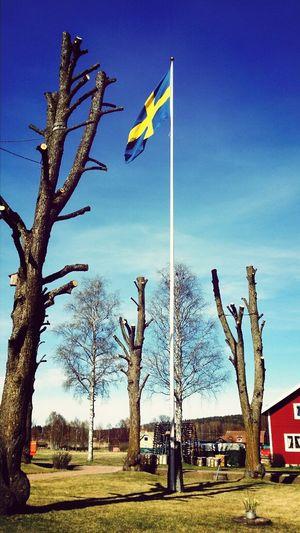 grandfathers birthday! Sweden Swedish Flag Birthday Dalarna