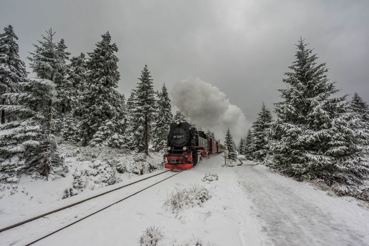 Harzer Bahn, Brocken Beauty In Nature Cold Temperature Day Harz Land Vehicle Locomotive Mode Of Transport Mountain Nature No People Outdoors Public Transportation Rail Transportation Scenics Sky Smoke - Physical Structure Snow Snowing Steam Train Train - Vehicle Transportation Tree Weather Winter