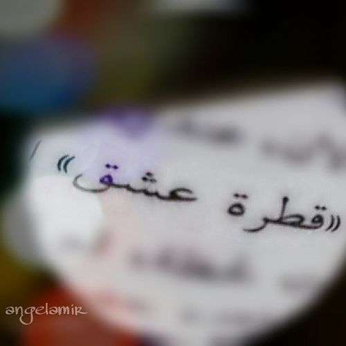 قطرة عشق ♡أمير ✿ Fish_eye_lens_by_me