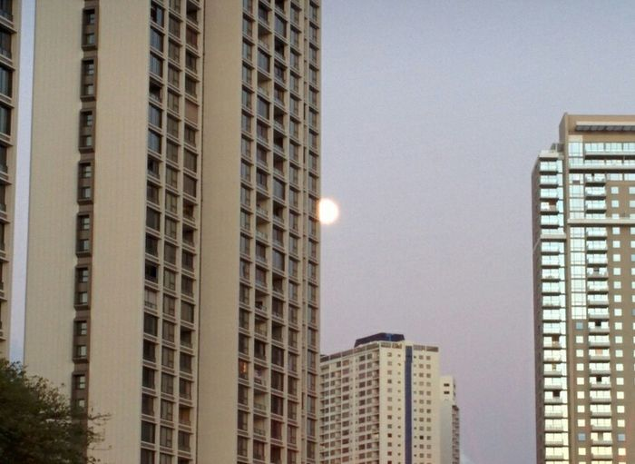 Moon shy Full Moon