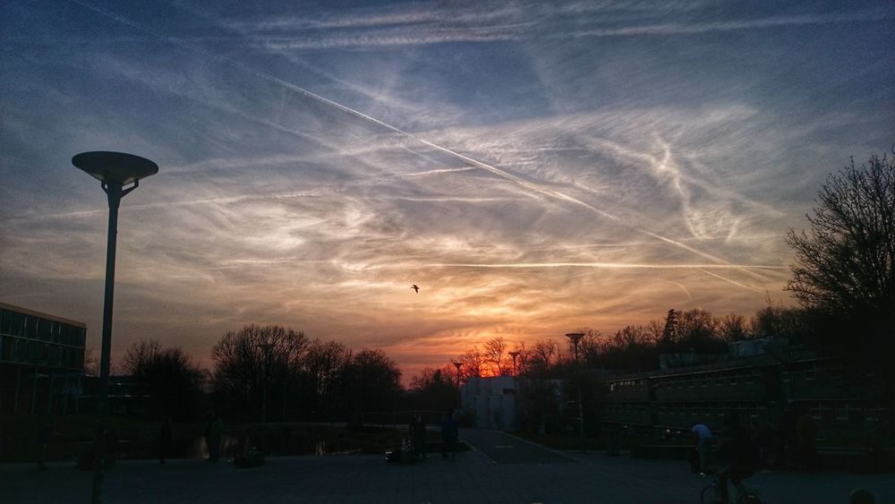 Sunset Cloud - Sky Sky Dramatic Sky Outdoors Chemtrails Nature Beauty In Nature Landscapes Landscape Scenics Sunlight Clouds Sun Bird Eyeem0711