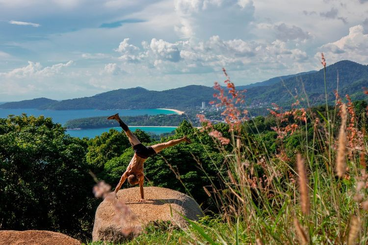 View of giraffe on landscape against sky