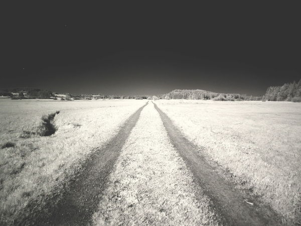 the way forward infrared Forward Infrared Path Perspectives On Nature Black And White Blackandwhite Day Infrared Photography Inrared Nature No People Outdoors Sky The Way Forward Way