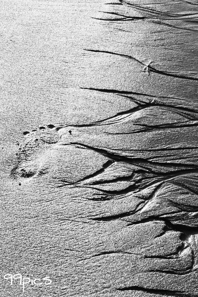 Raices. Shadows Seascape Anotherdayinparadise The Essence Of Summer Black And White Shadows & Lights B&w Photography Blackandwhite See The World Through My Eyes From My Point Of View Blancoynegro Sillouette Sand Dune Relaxing Another Dimension Abstract Another World Minimalobsession