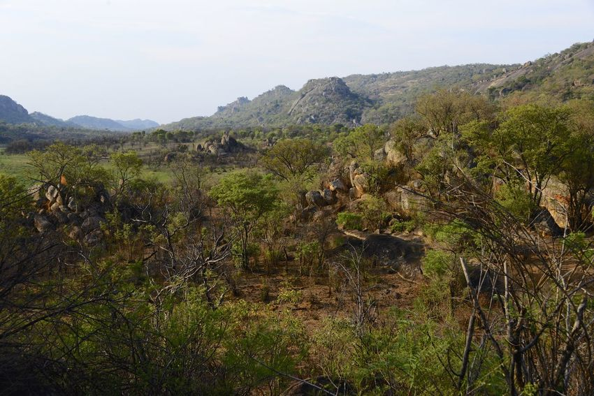 Rhodes Matopos National Park MatopoHills National Park Rhodes UNESCO World Heritage Site Zimbabwe Africa Beauty In Nature Day Landscape Mountain Nature No People Outdoors Rhodes Matopos National Park Scenics Tranquil Scene Tranquility Tree Unesco