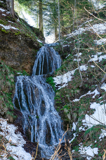 Waterfall above Ennetbuehl, Switzerland. Beauty In Nature Ennetbuehl Forest Motion Nature No People Outdoors Scenics Switzerland Tree Water Waterfall Waterflow Perspectives On Nature EyeEmNewHere