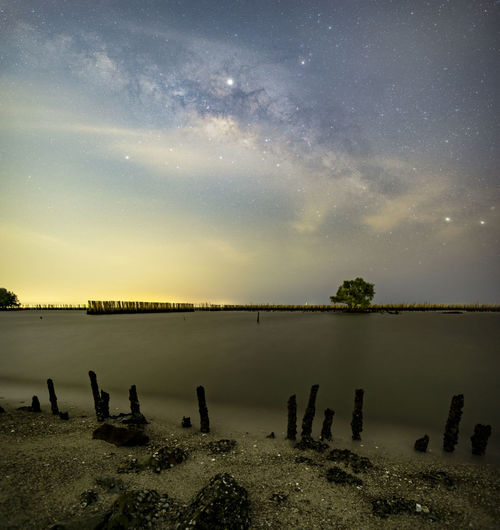 The Milky Way above a single tree and the bamboo landscape prevents the sea from breaking the coast. Scenics - Nature Star - Space Sky Space Beauty In Nature Astronomy Night Tranquil Scene Tranquility Nature No People Water Lake Cloud - Sky Idyllic Land Non-urban Scene Landscape Star Wooden Post