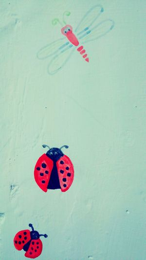 Drawing Wall Painting Cute Drawings Insects  Ladybird Nature_collection