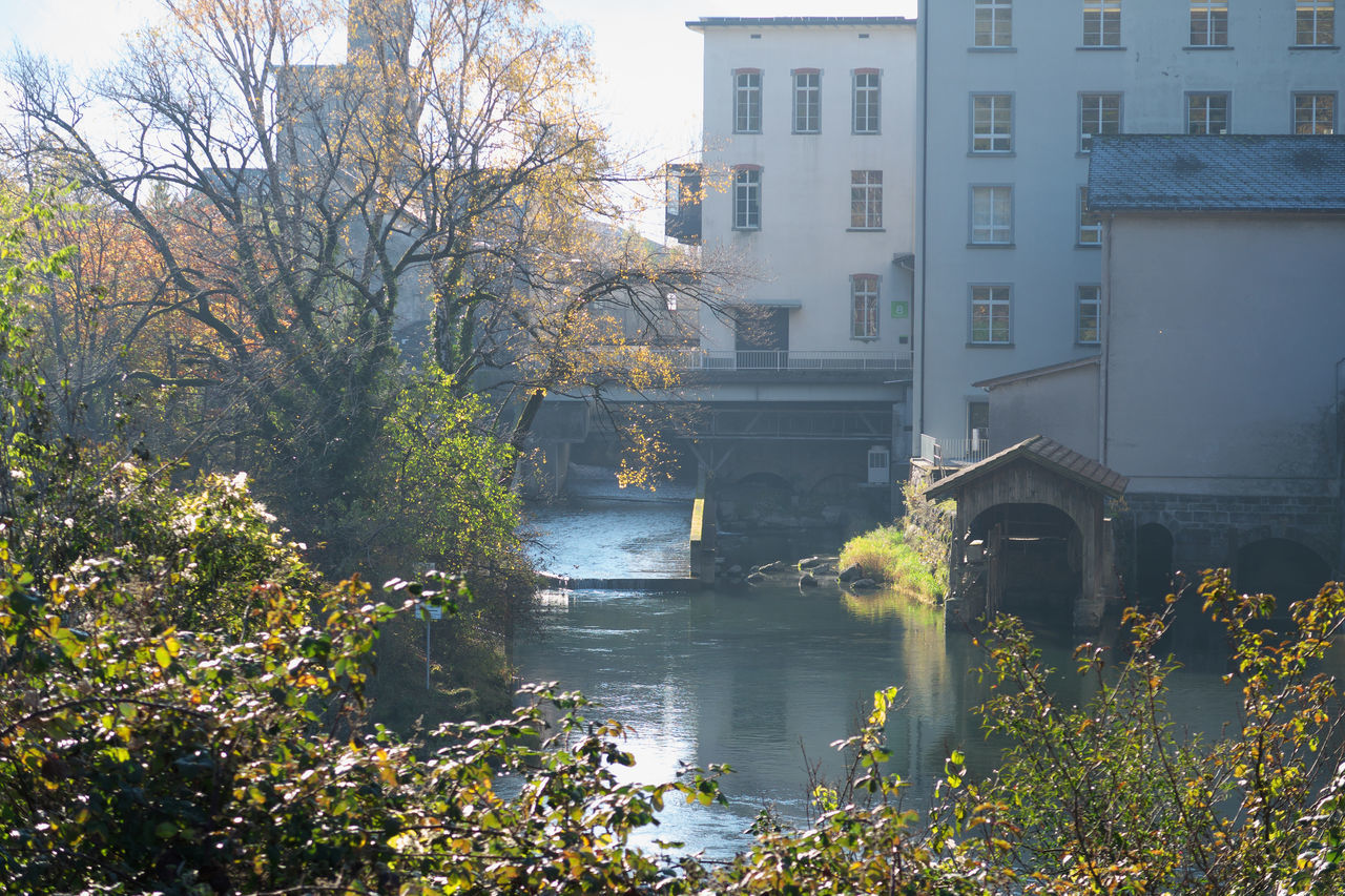 TREES AND RIVER BY BUILDINGS