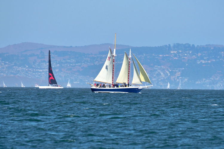 Yachts Racing On San Francisco Bay 11 San Francisco CA🇺🇸 The Color Of Sport Yachts Oracle Team USA Sailboats Racing Sailing Tacking San Francisco Bay Cityscape Hills Of San Francisco People On Board Enjoying Life A Day On The Bay Bayview Aboard The Alma Landscape_Collection Landscape_photography Watersports Teamwork Nautical Vessel Yachting Adventure Sport Crew Water Regatta Cruise Cruise Ship