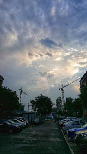 雨后傍晚 City Tree Road Sunset Car Street City Street Land Vehicle Sky Cloud - Sky
