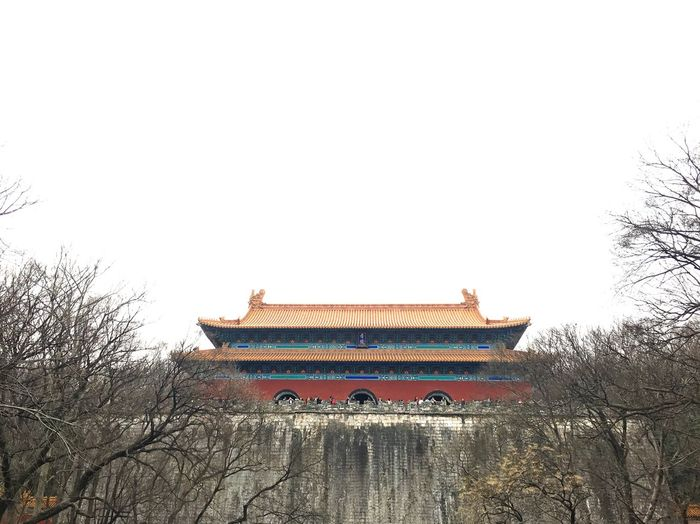 Architecture Bare Tree Building Exterior No People Built Structure Traditional Building Low Angle View Chinese Architecture Chinese Style Chinese Building China Travel Destinations Hello World Historic Historical Building