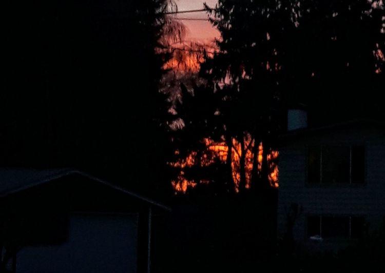 Looks Like Fire