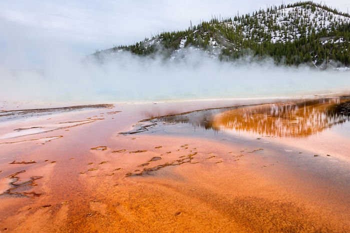 """""""Prismatic colors"""" After an extremely cold and cloudy day, the weather decided to give as a truce and let us enjoy the last rays of light, revealing the wonderful shades of colors at Grand Prismatic Spring in Yellowstone National Park, Wyoming, USA. http://www.picardo.photography/Portfolio/Landscapes/i-Dwc7fVW/A Hot Springs Steam Travel USA Wyoming Wyoming Landscape Beauty In Nature Day Dusk Geyser Grand Prismatic Grand Prismatic Spring Hot Spring Landscape Nature No People Outdoors Scenics Sky Steam Sunset Tranquility Travel Destinations Water"""