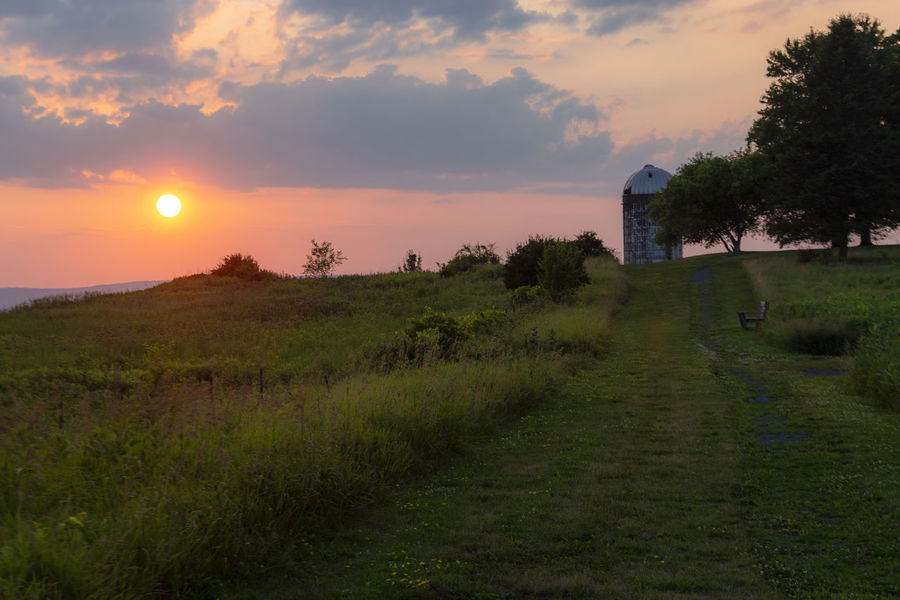 Sunset Over a Hudson, NY Farm Rural Scene Countryside Tall Grass Grass Sunset Cloud - Sky Built Structure Upstateny Newyorkstate 6D No People Path Warm Farm Silo Wheat Countryside Landscape Farmland