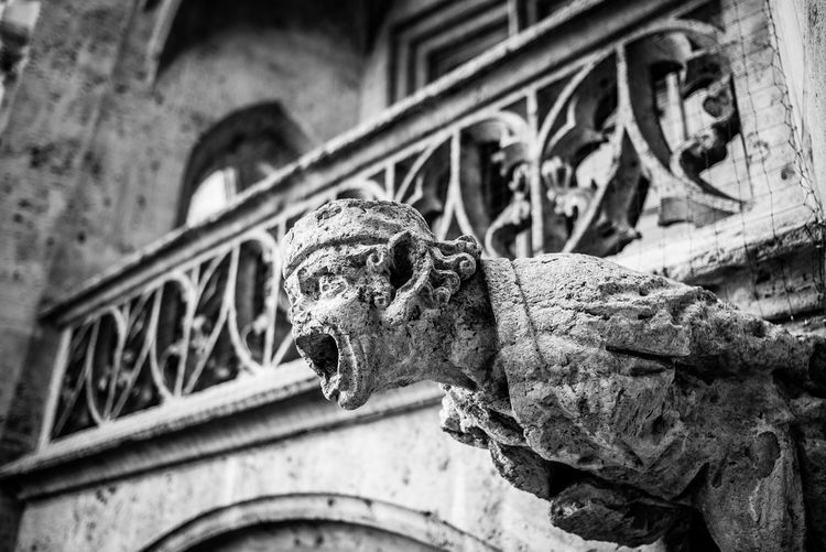 Architecture Representation Art And Craft Low Angle View Sculpture Focus On Foreground Built Structure Close-up No People Craft Day Building Exterior Old Creativity Statue Gargoyle The Past Animal Representation History Carving - Craft Product Outdoors Ornate