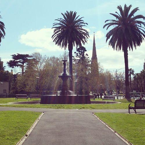 5 days in Melbourne Sunnydays Melbourneweather Melbourne Melbs Australia Palms Bigcity Beautiful Scenarie