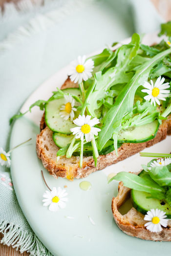 vegan sandwiches Arugula Beauty In Nature Breakfast Close-up Cucumber Daisy The Essence Of Summer Flower Focus On Foreground Freshness Garden Nature No People Petal Plant Ready-to-eat Serving Size Spring Summer Vegan Food Vegetable Vegetables Vegetarian Food White White Color
