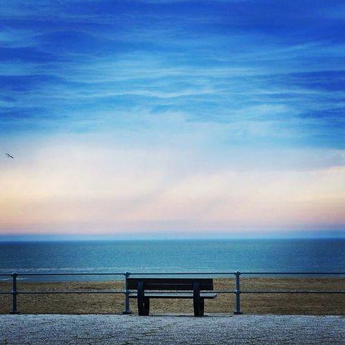 Sea Beach Sunset Relaxing