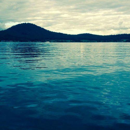 Lake Lake View Loon Lake OpenEdit RePicture Leadership EyeEmBestPics Water Reflections Nice Views