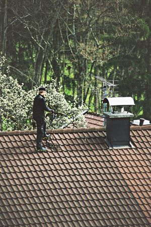 Chimney Chimney Sweeper ChimneySweep Day Fireplace Green Growth Nature Outdoors Plant Roof Rooftop Rooftops Tile Tiled Roof  Tree Work Working Working Man