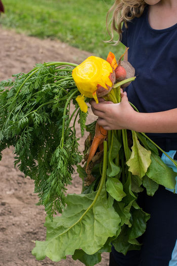 Bio Farmer Field Vitamins Young Blond Education Farm To Table Future Girl Healthy Diet Healthy Eating Organic Organic Farm Quality Control Red Beet Tour De Boer Vegetables Yellow Beets Young Adult Paint The Town Yellow